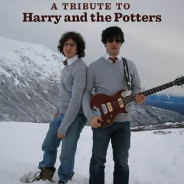 A Tribute to Harry and the Potters